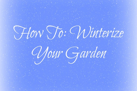 How To: Winterize Your Garden