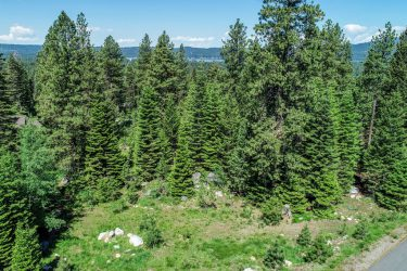 1585 Majestic View Drive McCall, ID 83638