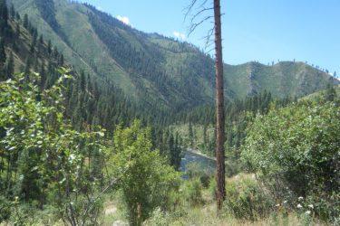 130 Dustin Road Warren, Idaho 83671