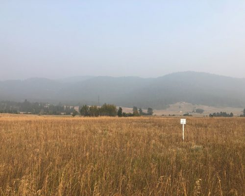 13752 Grouse Knoll Place McCall, ID 83638