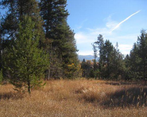 14174 Jefferson Road McCall, Idaho 83638