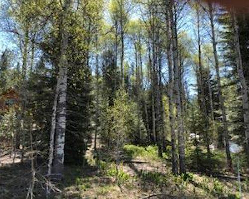 #17 Majestic View Drive McCall, Idaho 83638