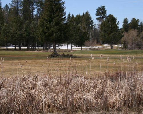 Lot 67 Brundage View Court McCall, Idaho 83638